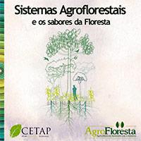 sistemas_agroflorestais_sabores_floresta-cp